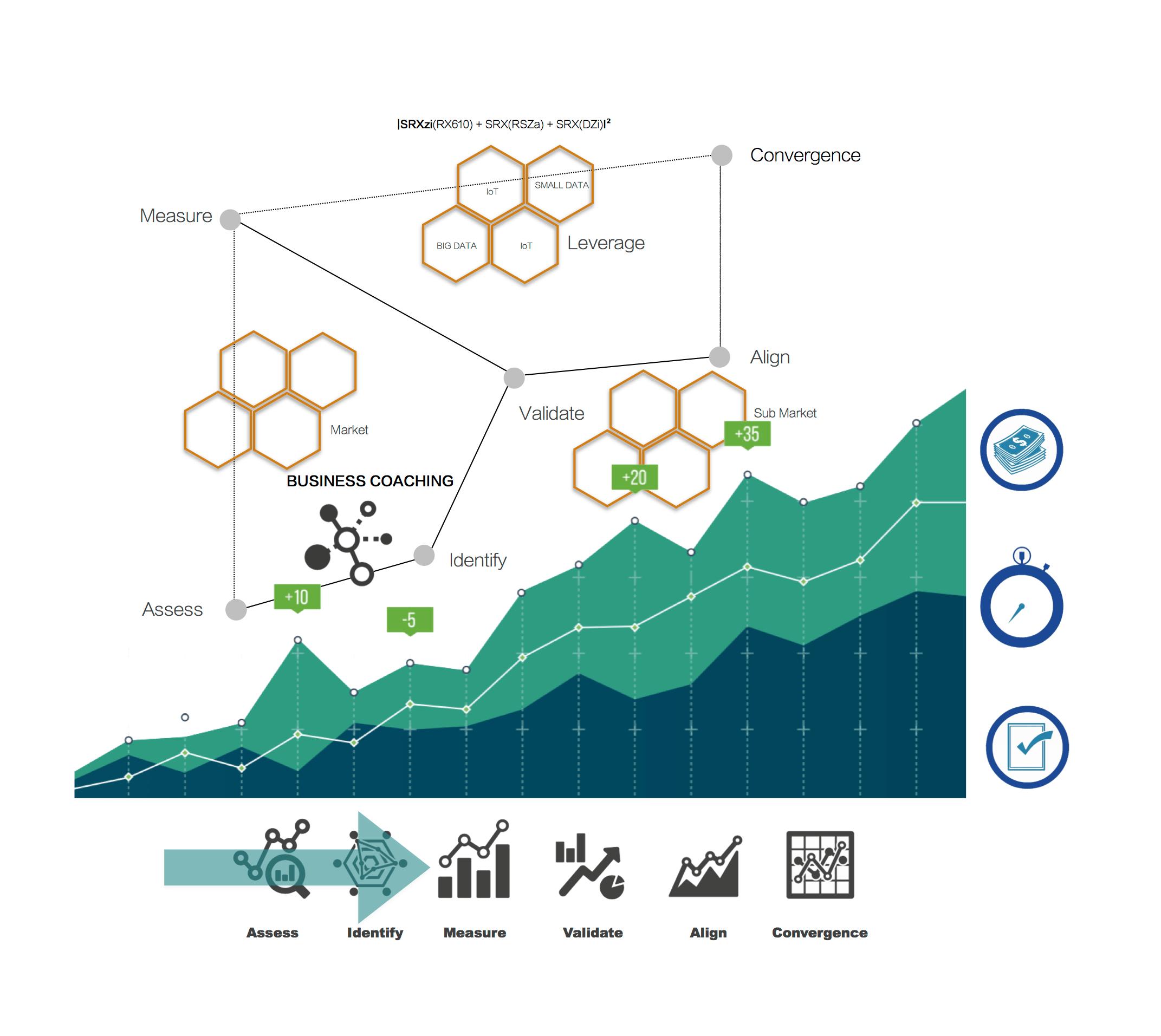 business coaching infographics - SRX610